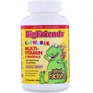 Мультивитамины для детей, Мulti Vitamin Minerals, Natural Factors, ягоды, 60 жевательных таблеток (Default)