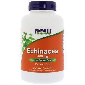 Эхинацея (Echinacea Purpurea), Now Foods, 400 мг, 250 капс