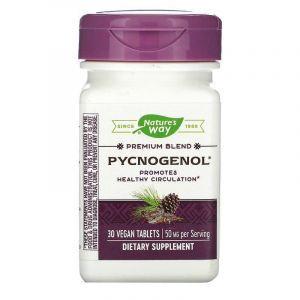 Пикногенол, Pycnogenol, Nature's Way, экстракт сосновой коры, 50 мг, 30 таблеток.